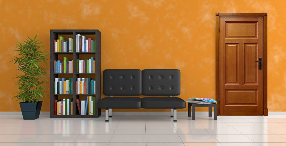 sofa, bookcase and plant in an orange living room